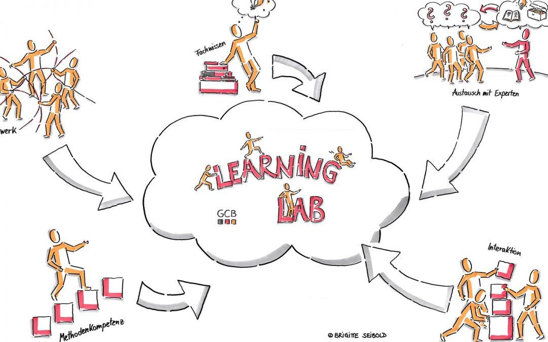 GCB Learning Lab Volume III